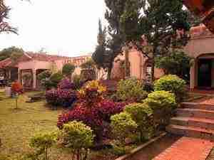 Yudhistira